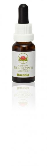 Boronia 15 ml