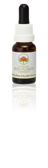 Dog Rose of the Wild Forces 15 ml